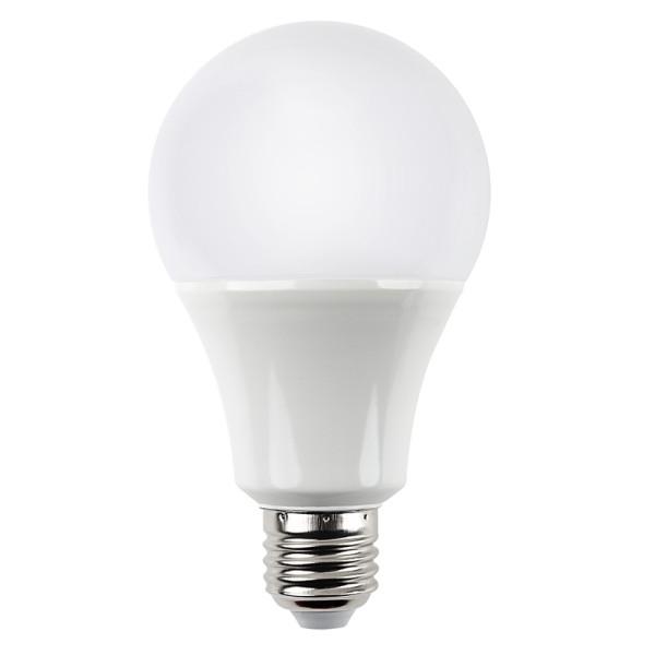 a21-led-bulb-12w-12-volt-dc